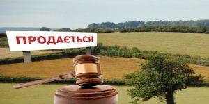 11 МІФІВ ПРО РИНОК ЗЕМЛІ, якими лякають українців