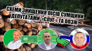 На Шосткинщіні депутати «Слуги народу» і «ОПЗЖ» об'єдналися та заробляють крадіжкою лісу